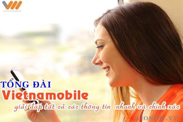 hoi-tong-dai-vietnamobile-so-may-2